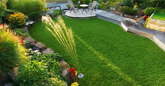 Den perfekte græsplæne