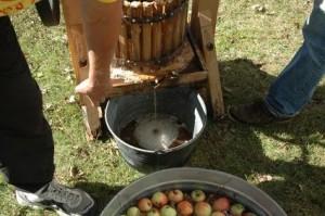 Frugtpressen bruges til at fremstille æblemost