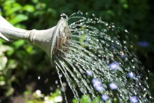 Regnvandstønde - regnvandsbeholder - regnvandsopsamler